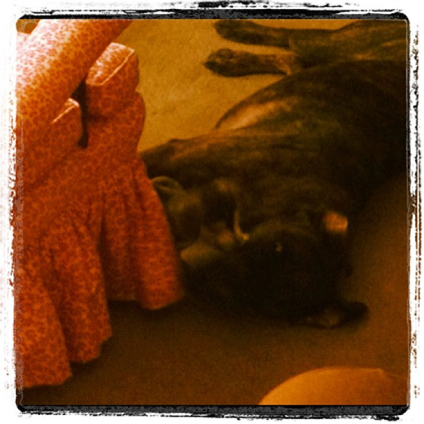 Best thing ever! Luke learned to play with the puppy without anyone getting hurt! (Taken with Instagram)