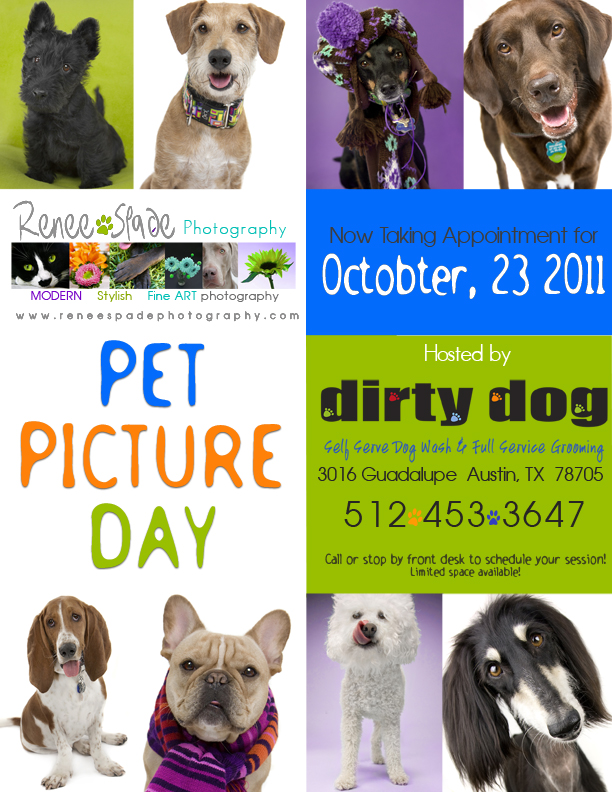 PET PICTURE DAY Oct 23rd! Get your pictures back in time for HOLIDAY GIFTS! www.reneespadephotography.com