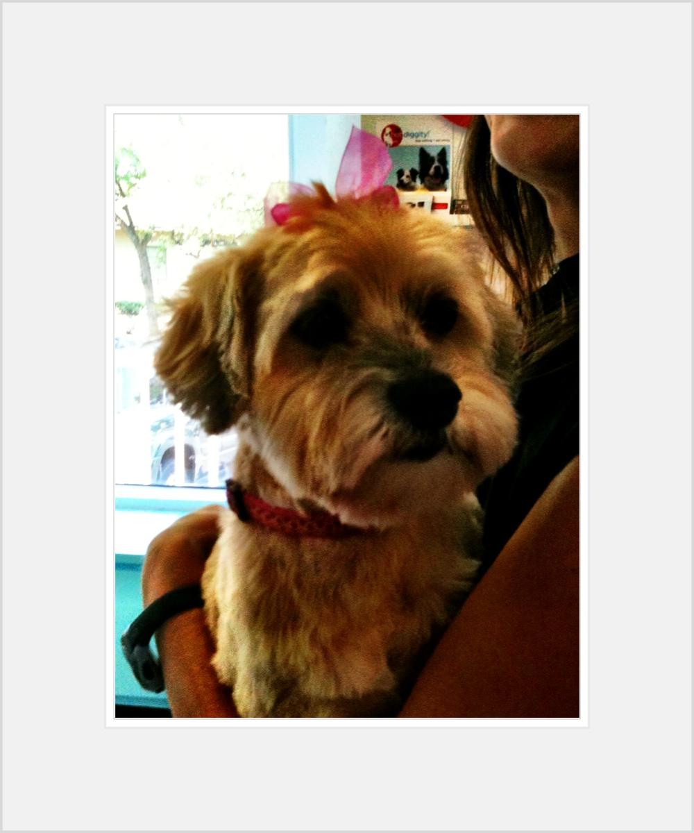 Annabelle!!!