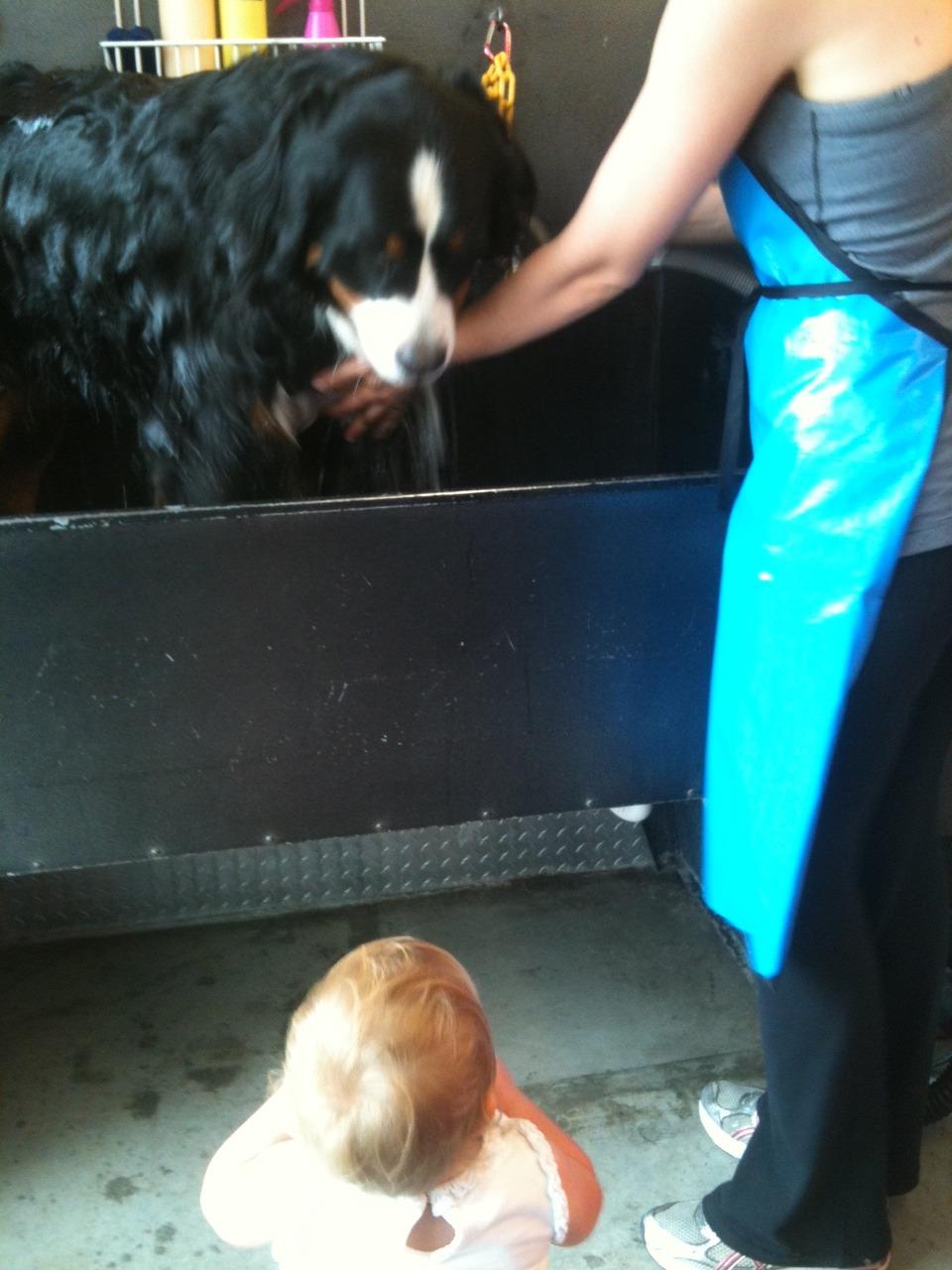 Hudson watching her big sister Stinson gettin a bath!