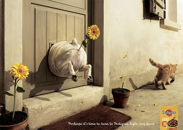 A great, if  slightly  disturbing, ad for diet dog food!