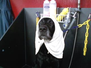 Beau isn't afraid to admit he loves his spa days :)