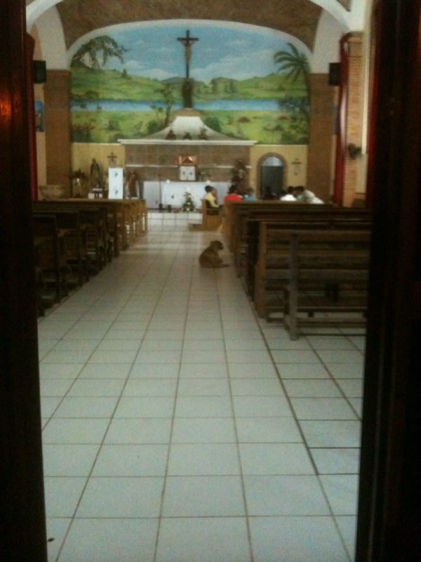 Is it funny or sad that we vacation in a place where there are dogs everywhere? Even in churches!