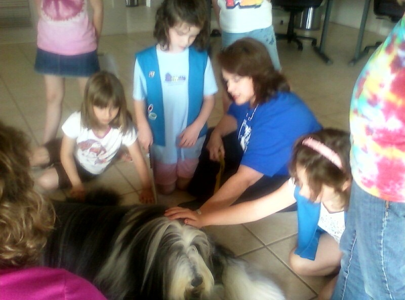 "This is our good friend Patrick. In his ""day job"" he is a Therapy Pet Pal and visits hospitals and nursing homes. As a side gig, he visited this Daisy Girl Scout troop to help them earn their ""Girl Scouts Care"" badge. We were so happy to introduce them to each other!! The girls LOVED him!"