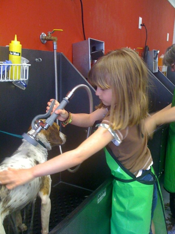 Jack gets his first bath at Dirty Dog and I heard it went well! Thanks @andreaschulle for sending the cute picture!!