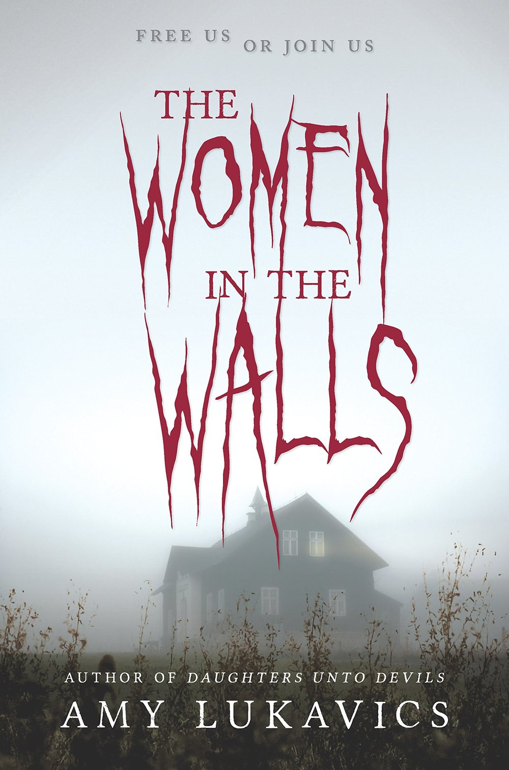 The Women in the Walls, by Amy Lukavics