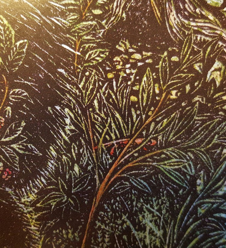 Close-up of the porcupine illustration on pg 19.