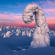 frozen_dusk_rafaelrojas
