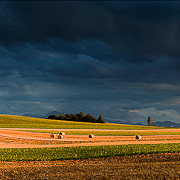 storm-and-wheat-field-blog2