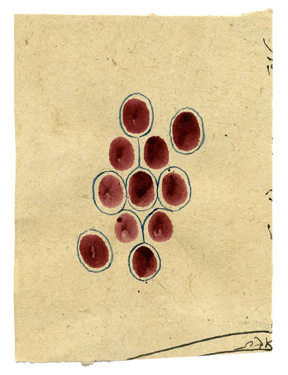 Tantra    Untitled  , ca. 1980-2014 Natural pigments (hand-ground colors: including minerals, mother of pearl, coral, tree resin, vegetable pastes) on vintage paper 6.69 x 5 inches 17 x 12.7 cm Tant 25