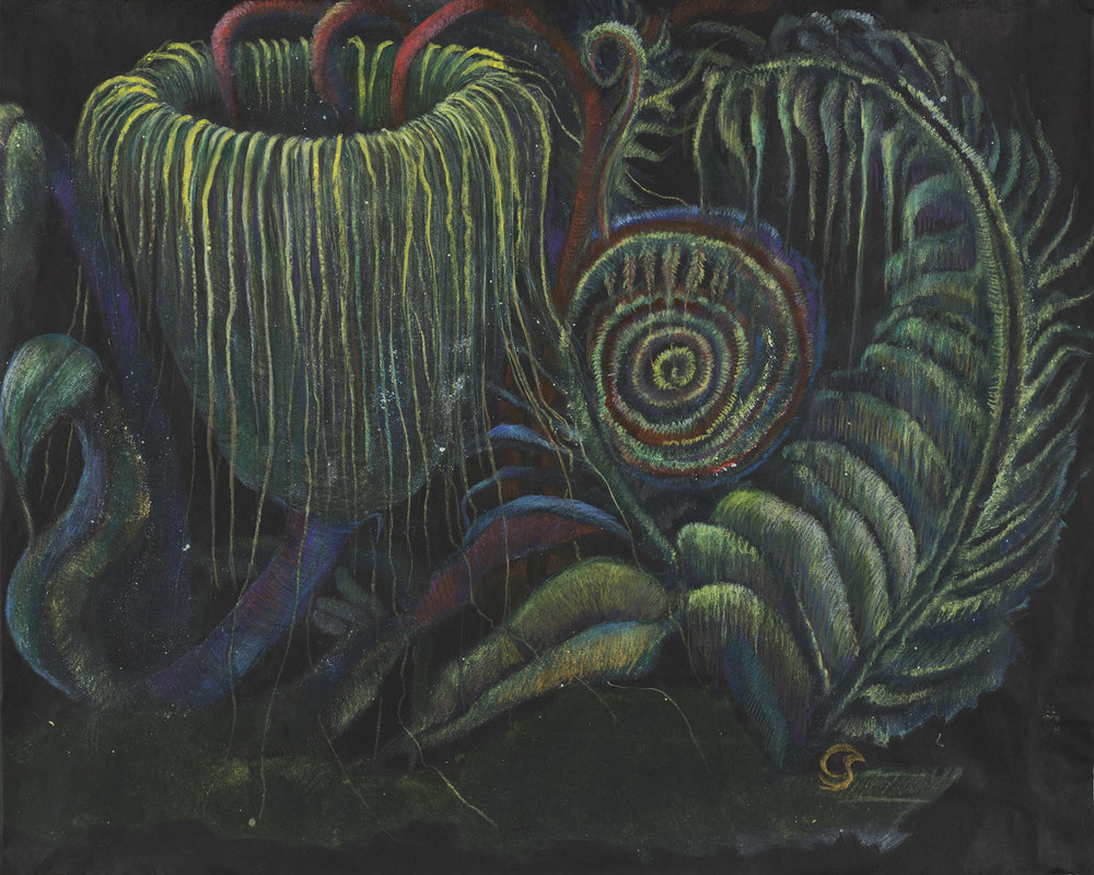 Christine Sefolosha Botanical Phantasy #2, 2014 Oil monotype and colored pencil on paper 19 x 23.75 inches 48.3 x 60.3 cm CSe 101