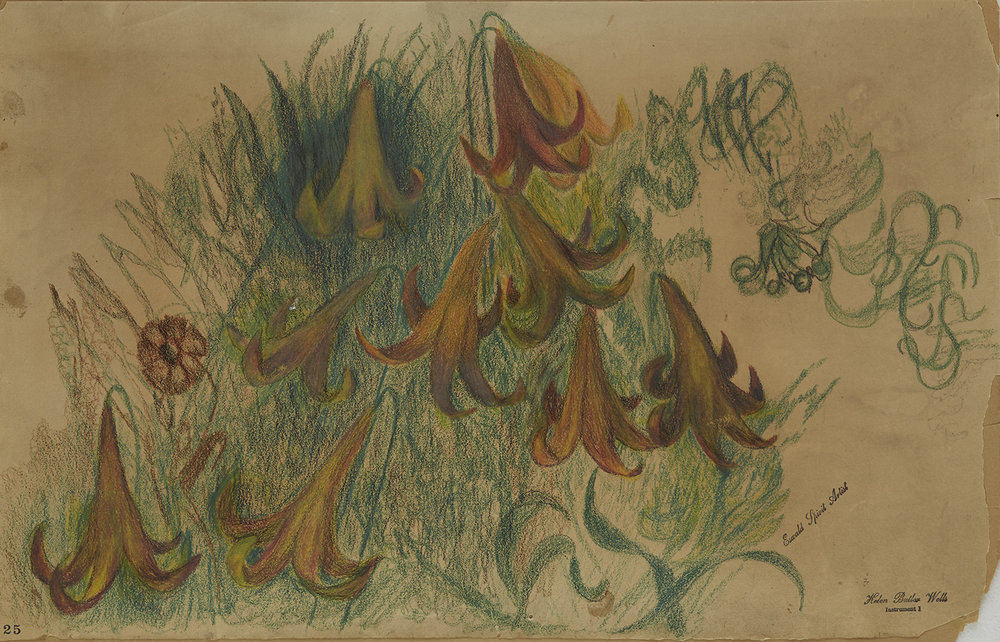 Helen Butler Wells  Spirit Drawing #25  , n.d. Colored Pencil/paper 10 x 16 inches 25.4 x 40.6 cm HW 50