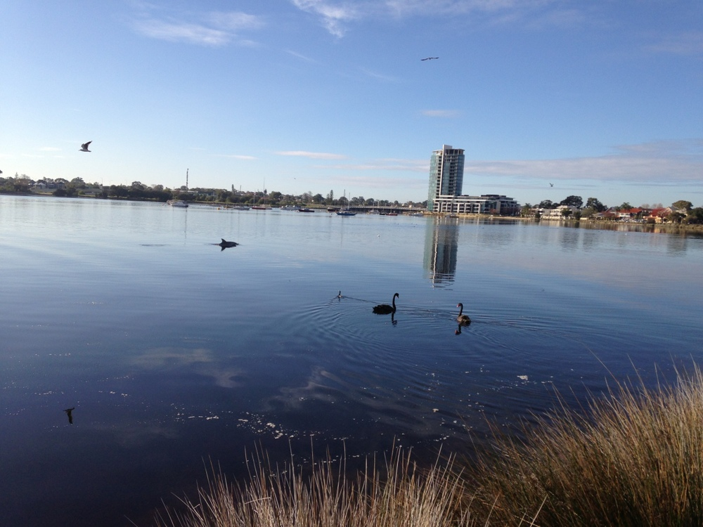 Swan River, Applecross