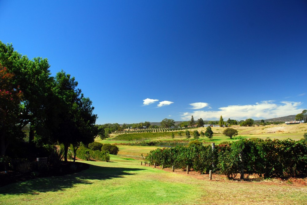 Picturesque Swan Valley offers gourmet food, wine and boutique micro-breweries