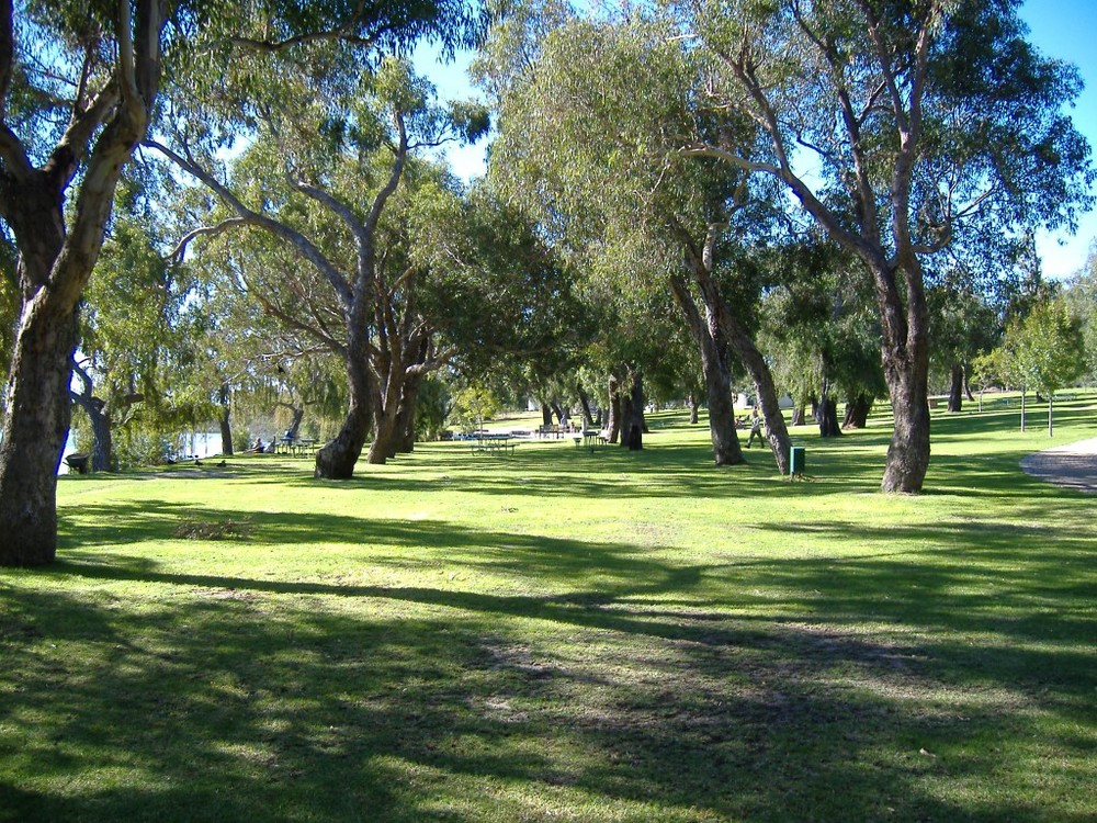BBQ and picnic facilities in Yanchep National Park