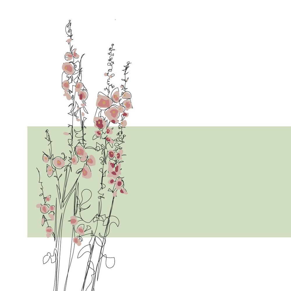 floral-contour-drawing.jpg