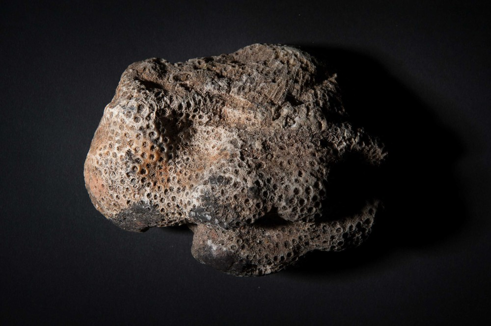Tiny Rocks-16.jpg