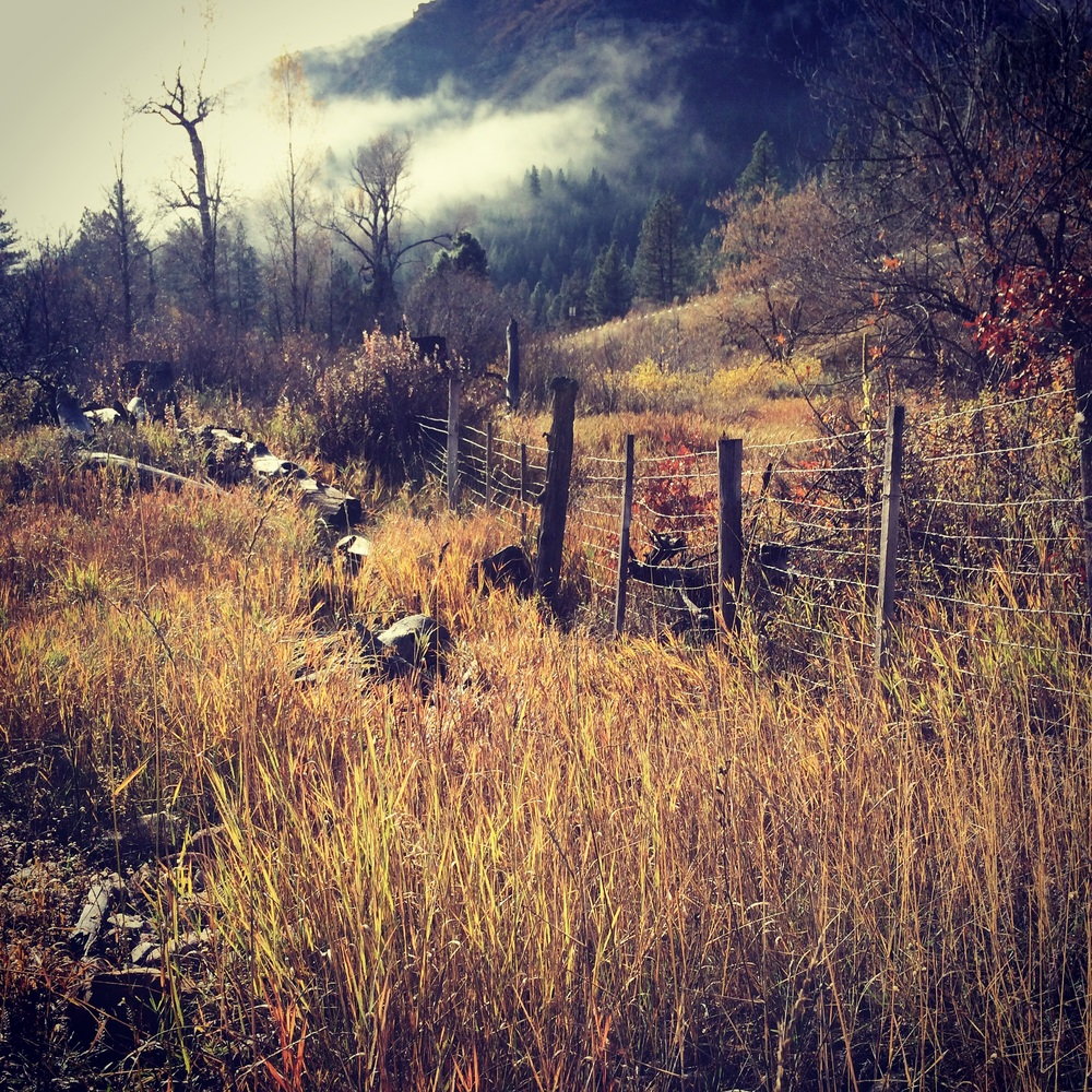 Autumn in Durango Colorado, picture by Crystal Hartman