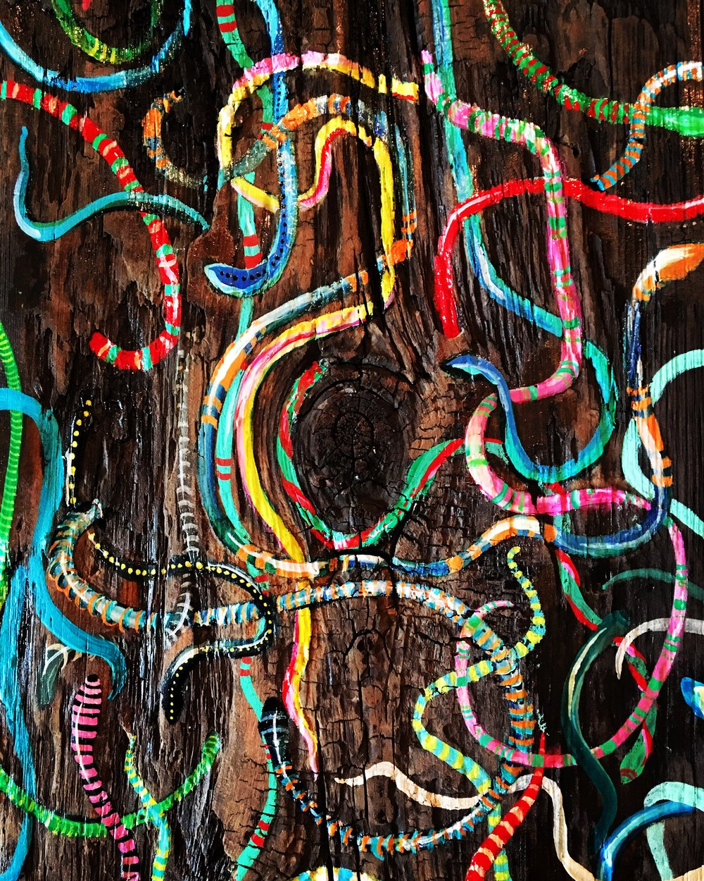 Coming out of the Woodwork ... painting on wood by Colorado artist Crystal Hartman, exhibiting through the holidays at Raider's Ridge, Durango Colorado