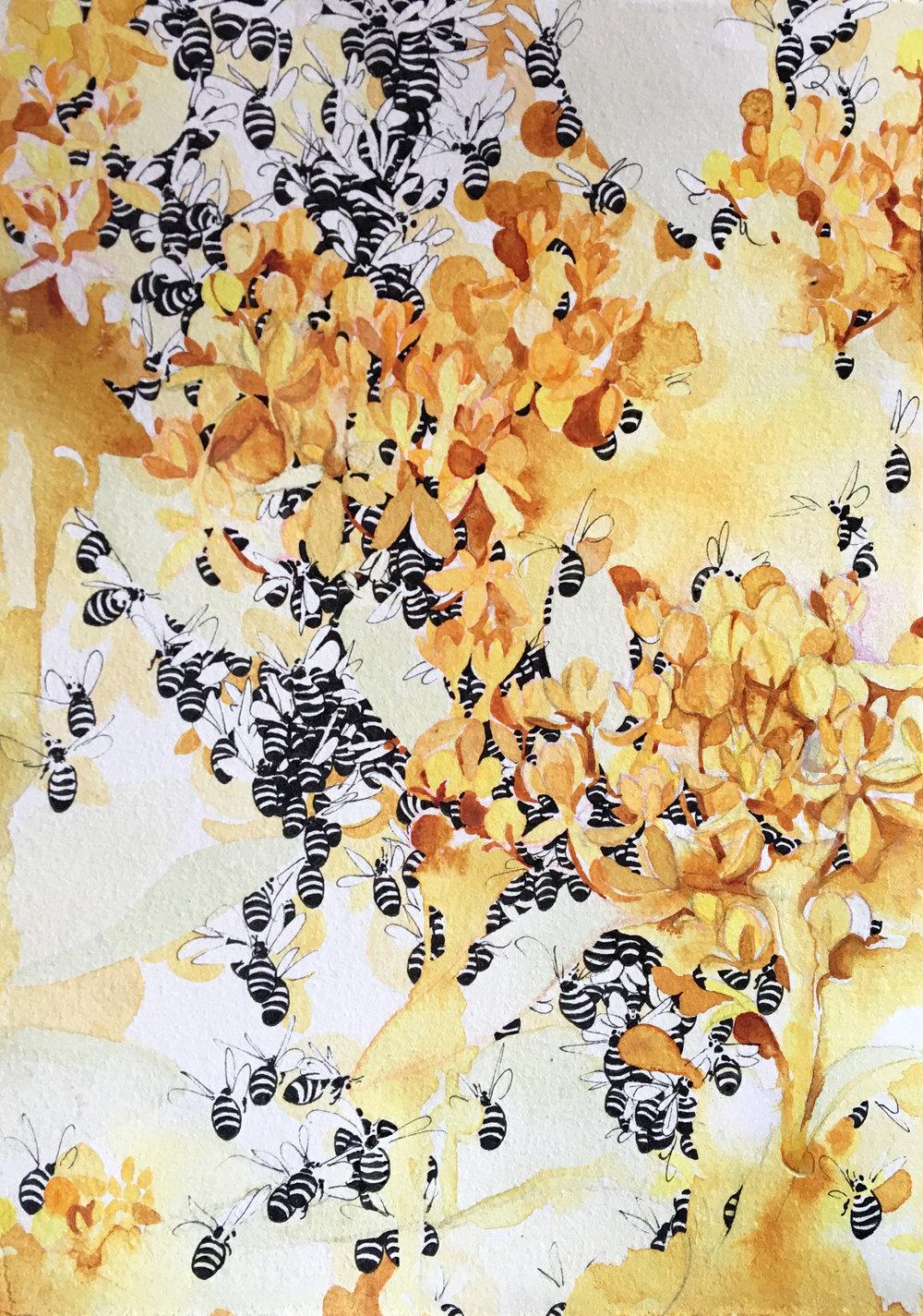 Honeybees in Honey Trees
