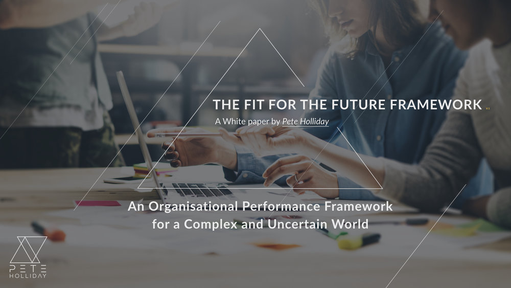 The Fit For The Future Framework
