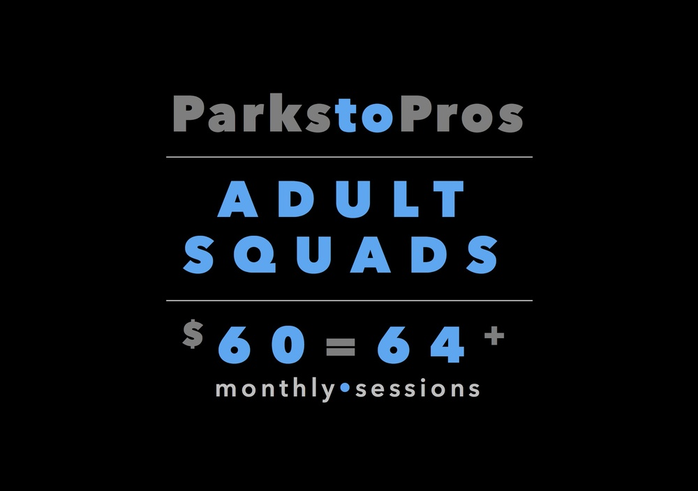 Click the image to go to www.ParksToPros.com  Adults.