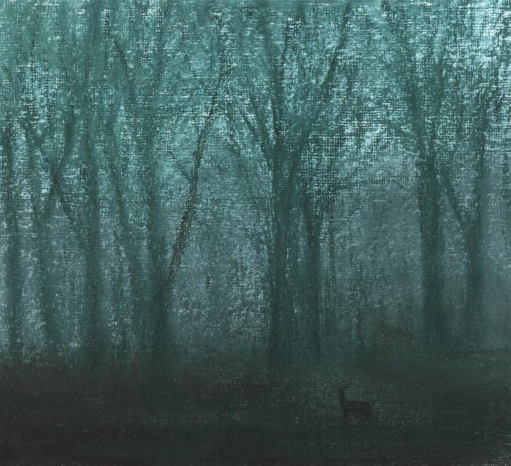 Lanhydrock woods