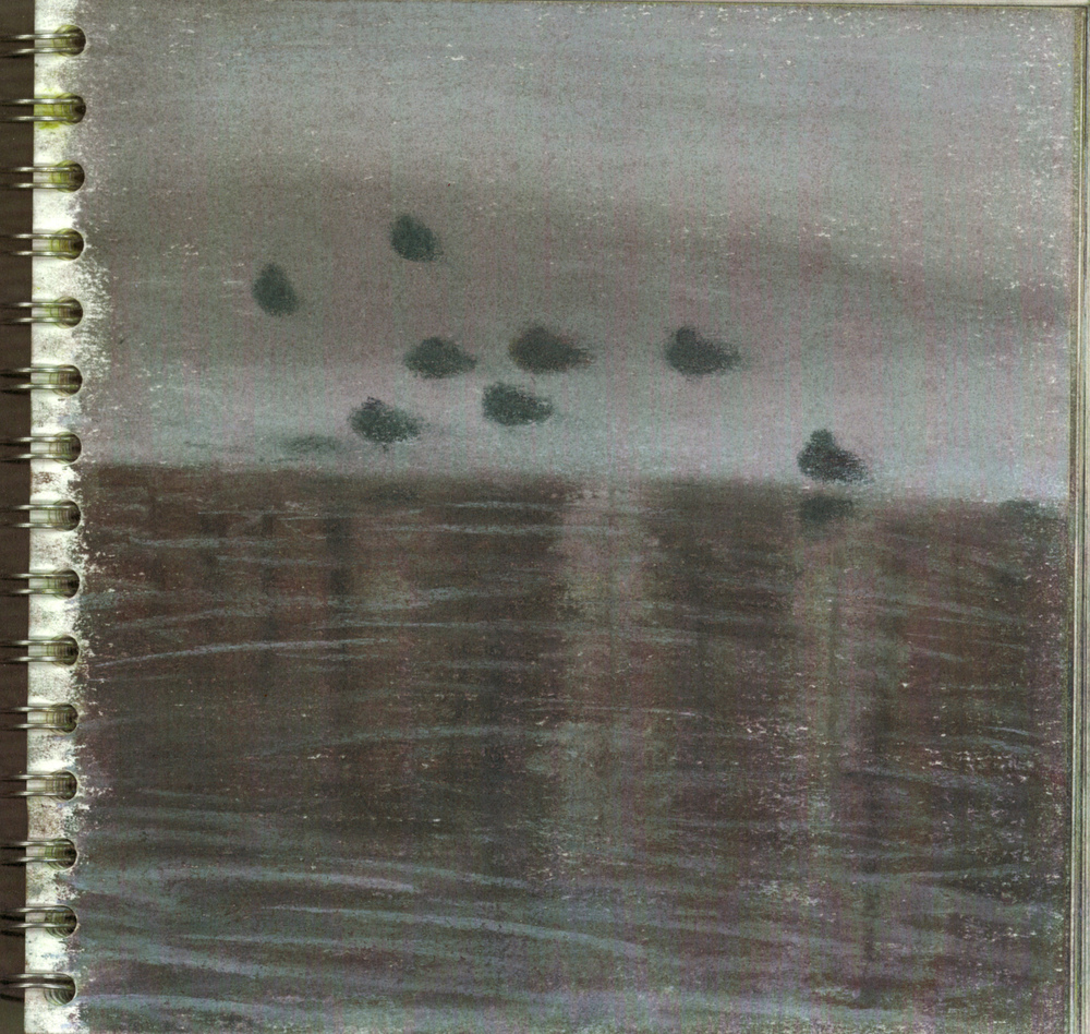 Birds IV, Normandy