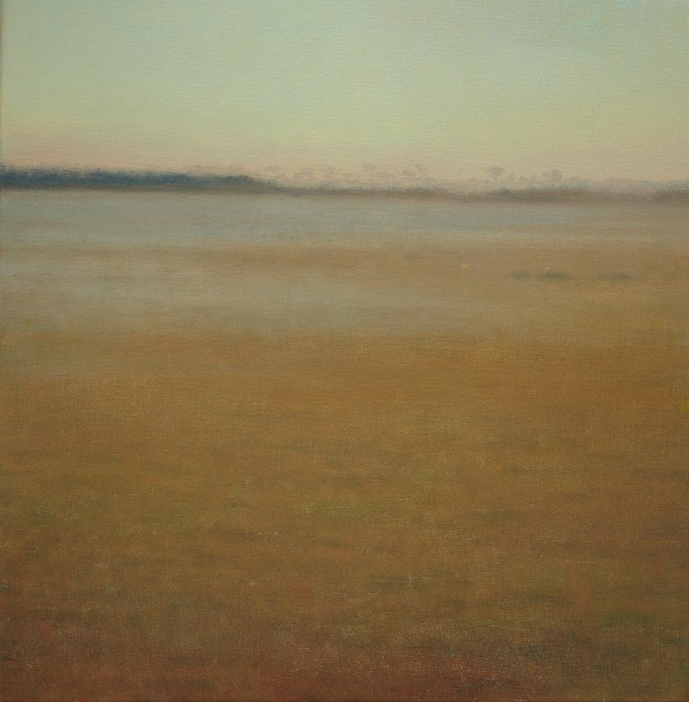 Goonhilly dusk I