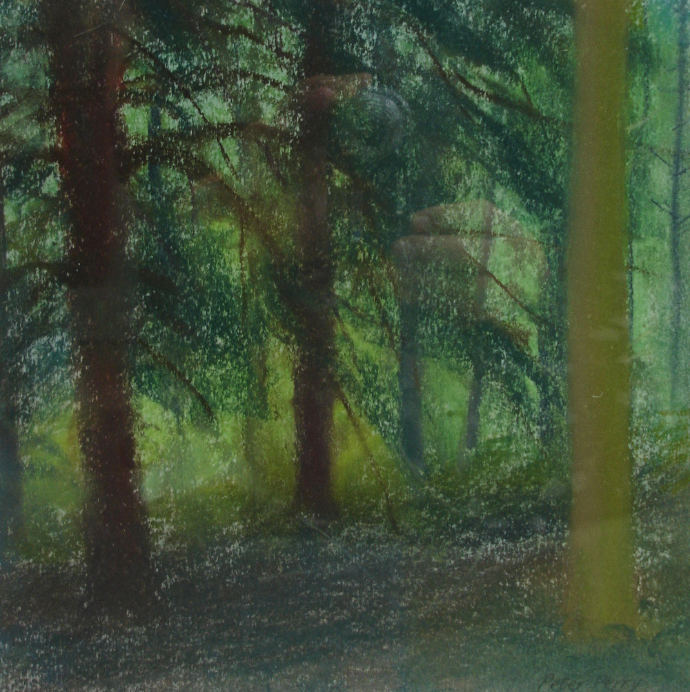 Trelowarren Woods I