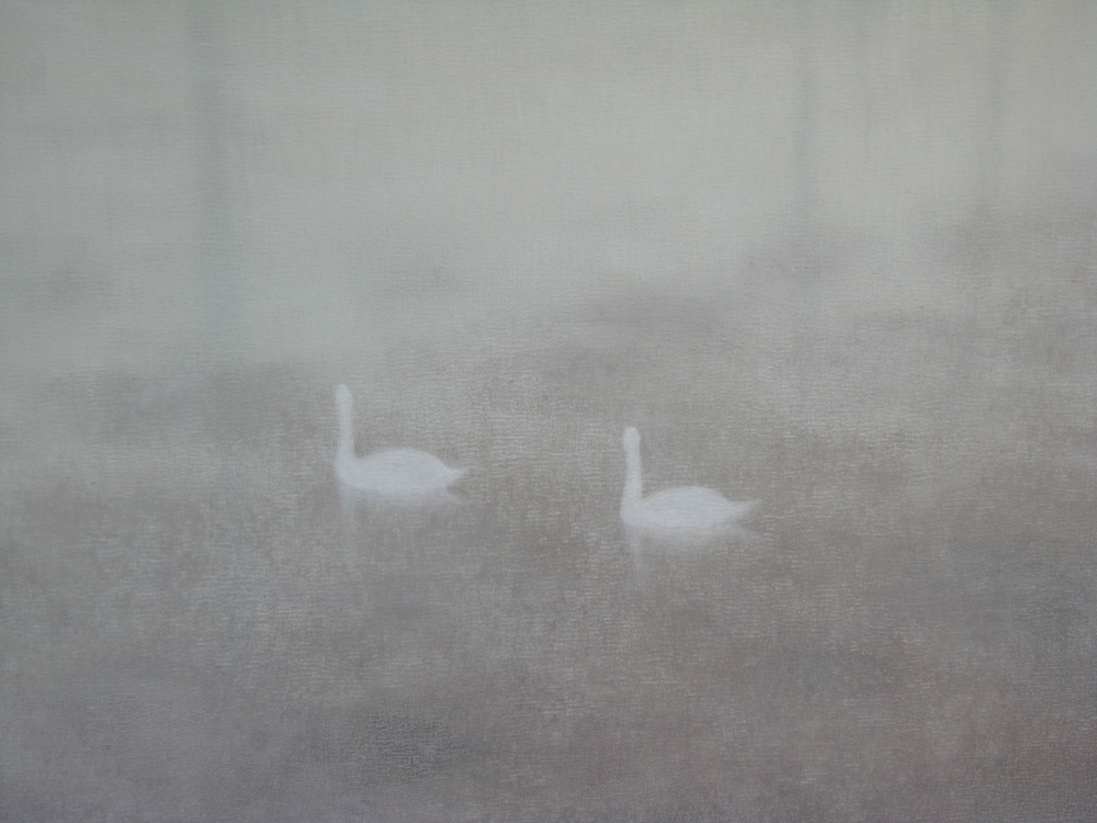 Swans over weed