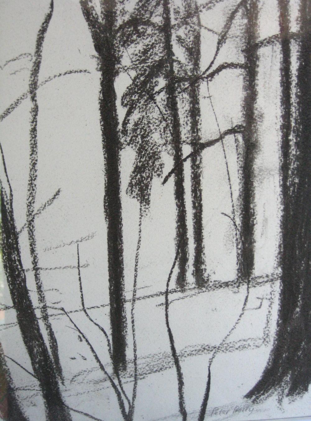 TREES, WINTER III
