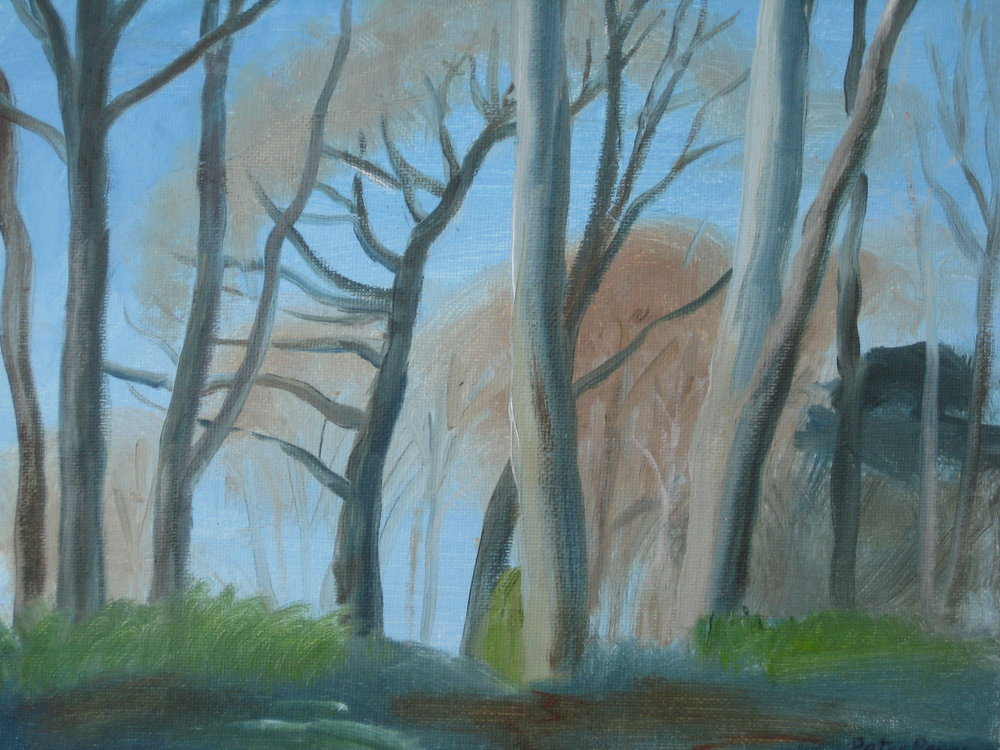 "TREVELLOE WOOD, SPRING I  8x10"" (20x25cm)  Oil on canvas board"