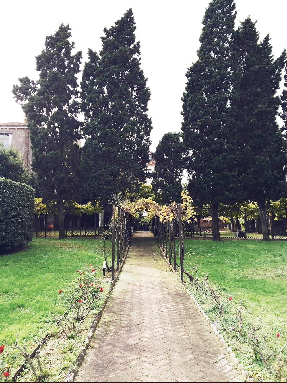 garden 1000px.jpg