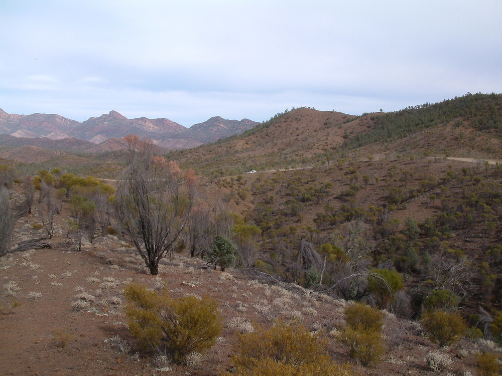 The lookout in the Flinders Ranges, part of the drive through Brachina Gorge.