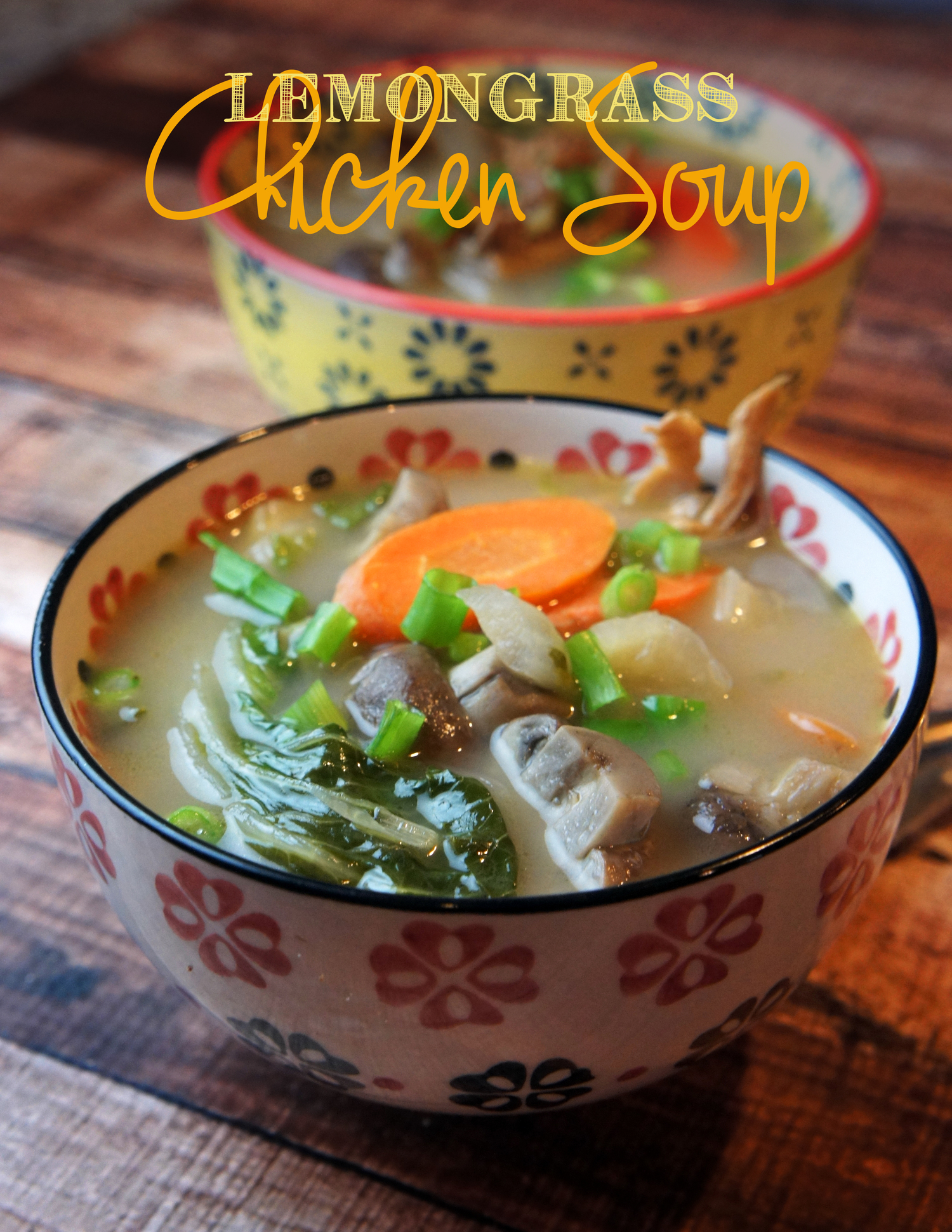 Paleo Healing Lemongrass Soup Foraged Dish