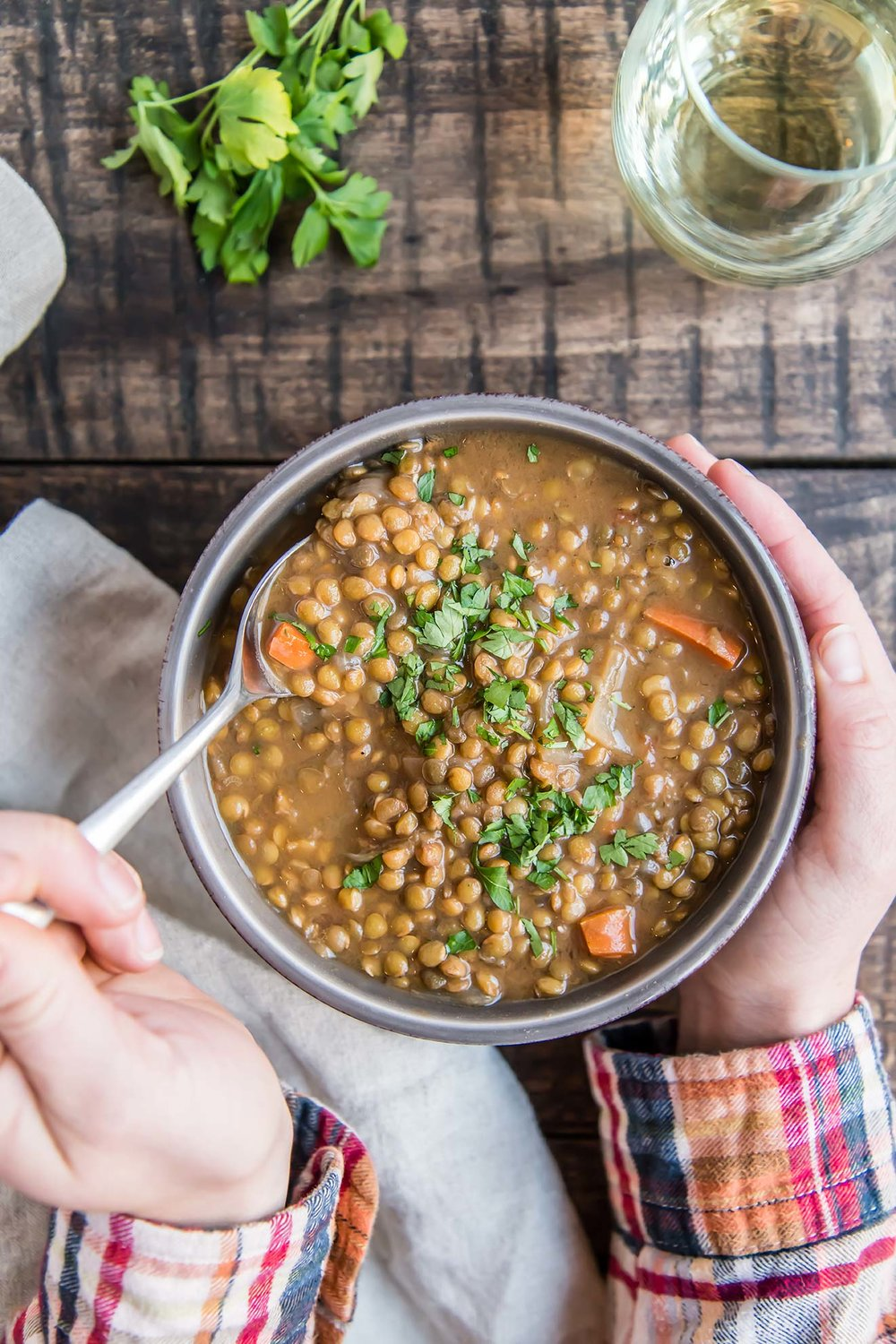Instant Pot French Lentil Soup