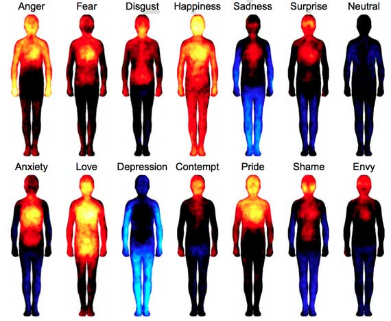 Self-reported body maps showing areas where subjects felt sensations increased (warm colors) or decreased (cool colors) for a given emotion. (Proceedings of the National Academies of Sciences)