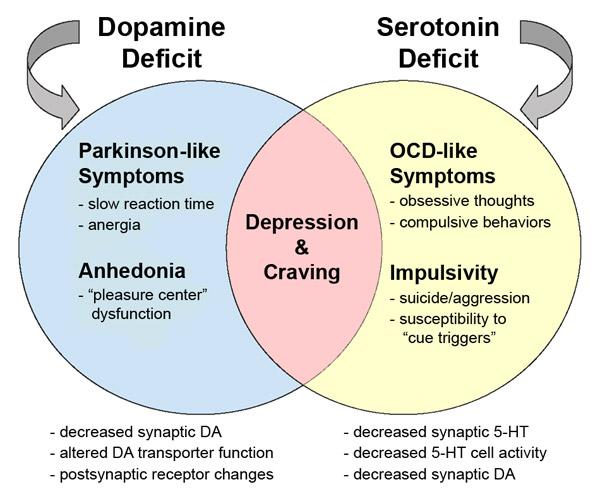 serotonin dopamine addiction