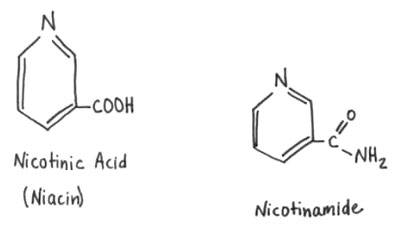 Niacinamide is also called nicotinamide, niamide and nicotic acid amide. It is important to be aware that niacinamide is NOT the same is niacin. They have slightly different benefits attached to each form of b-vitamin, which they both are.In today's post we are strictly focusing on niacinamide - NOT to be confused with niacin.