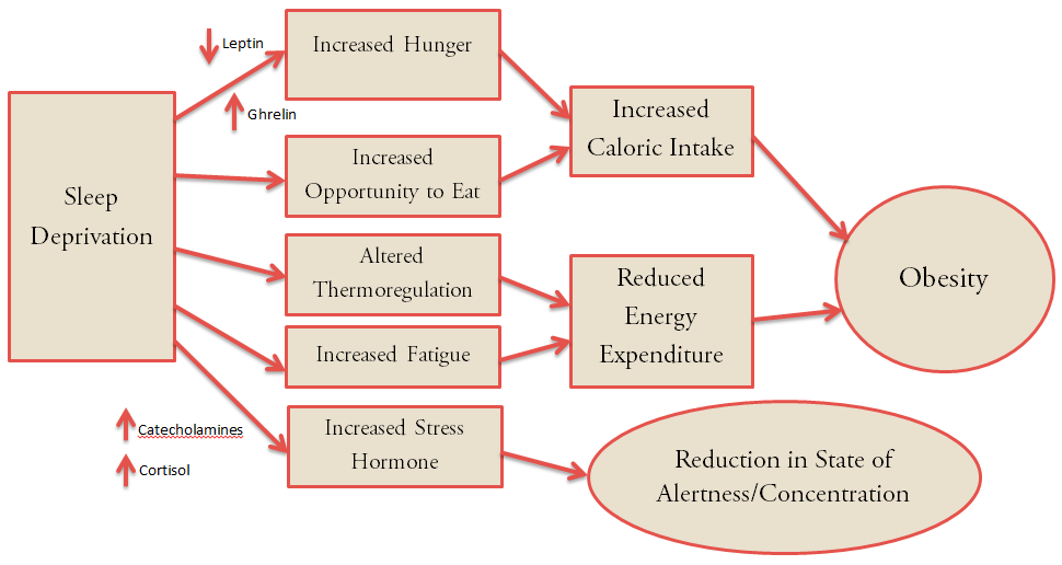 sleep weight and cravings