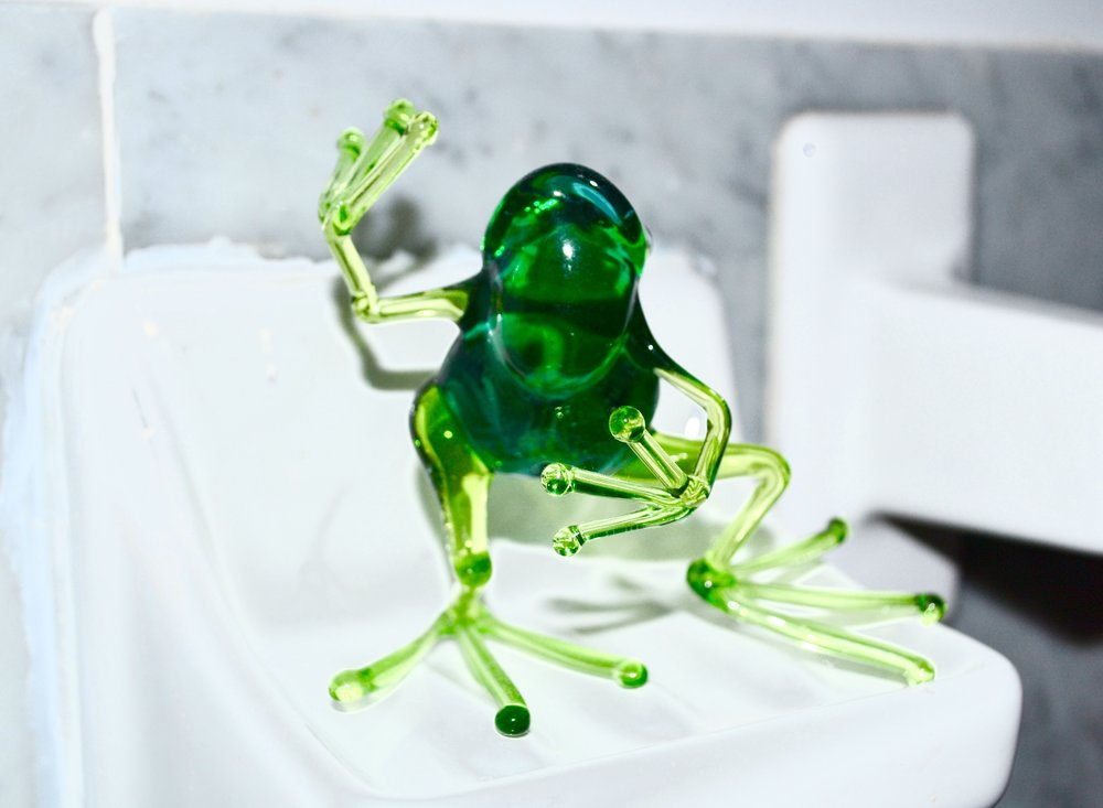 Meet Francis the dancing frog!