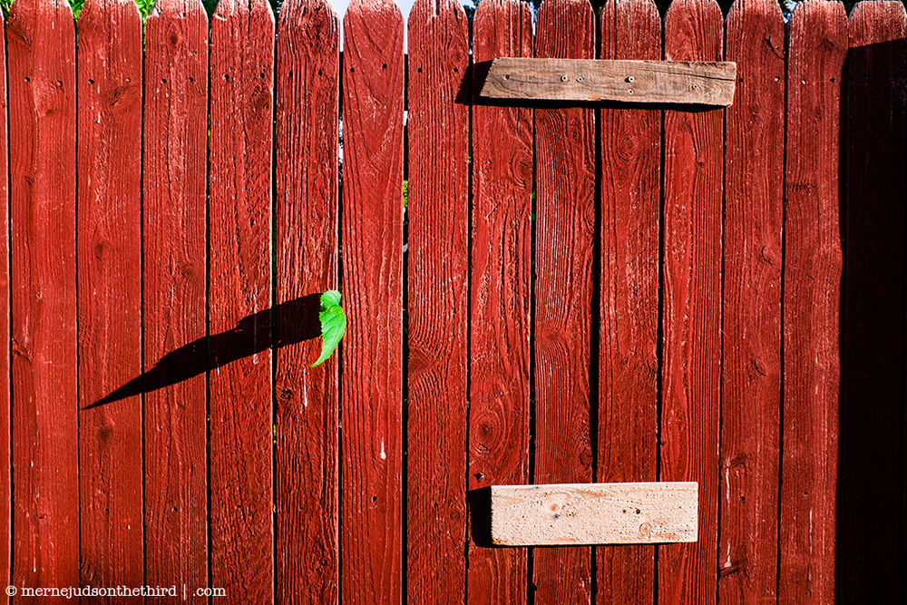 151 - An Explanation of Life With A Fence - 07.01.14 - One A Day series
