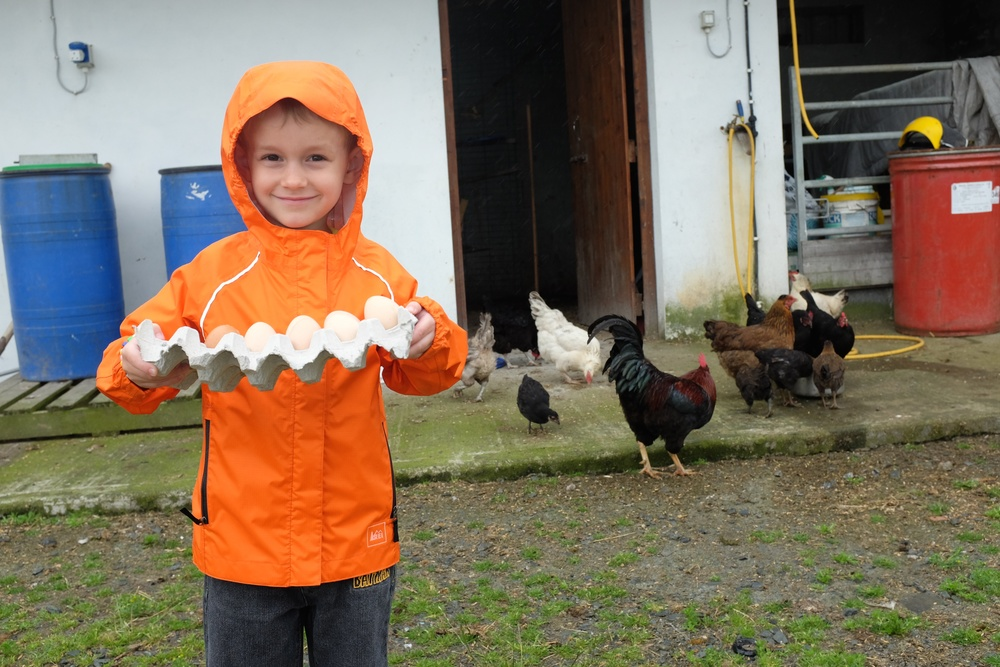 Farmer Kian and his eggs