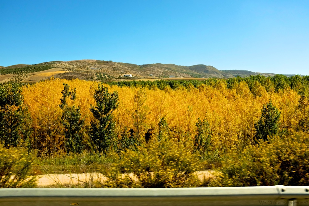 Scenic Drive in Andalucia