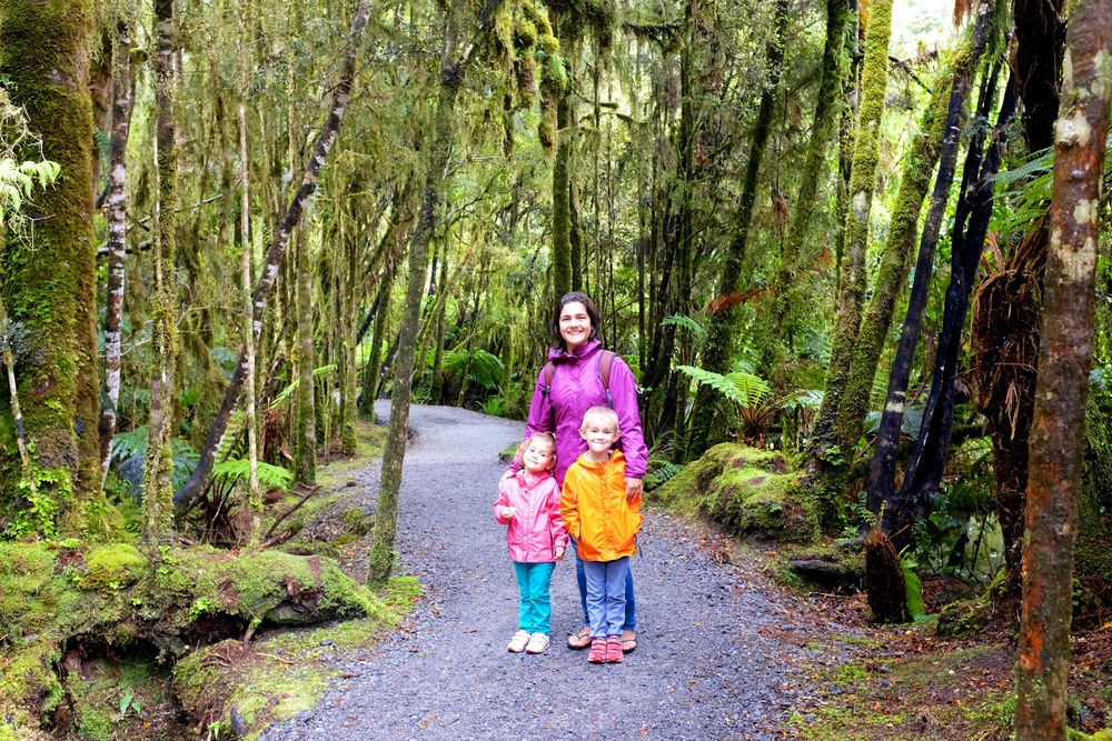 Lake Matheson's Trail