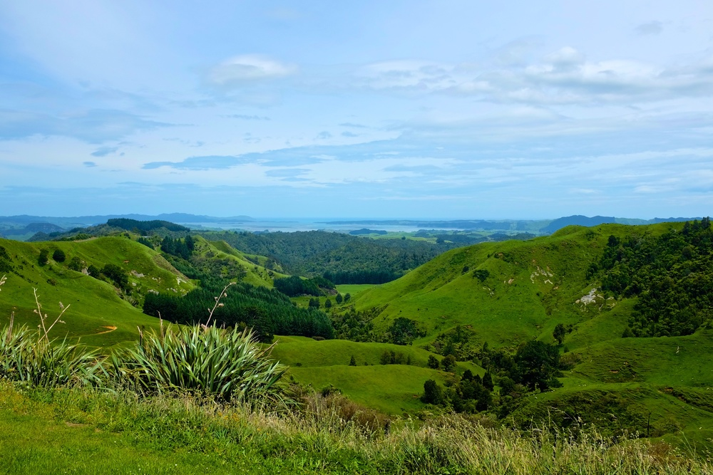 North Island Scenery