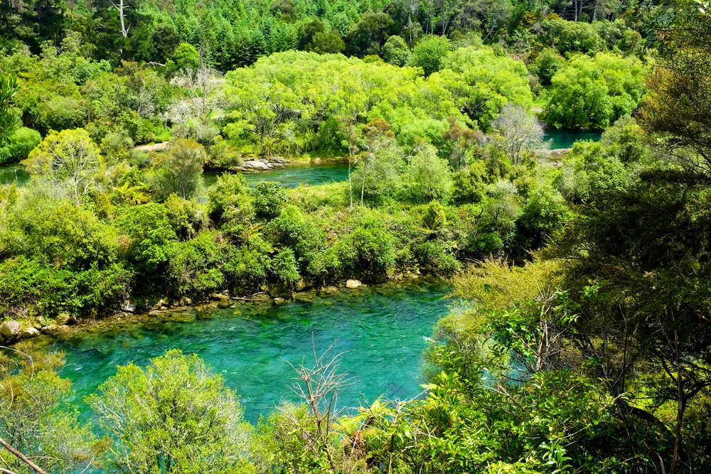 Hike to Huka Falls