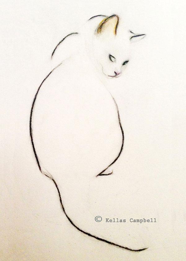 cat_sketchww.jpg