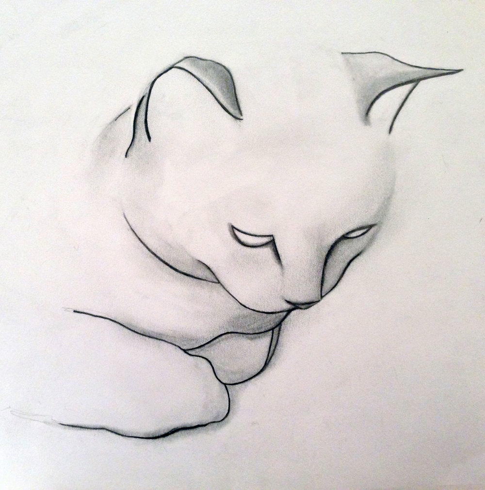 This was the first cat drawing I ever sold, back in December 2013 at the Crouch End Festival.  It's also of Charlie.